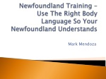 Newfoundland Training