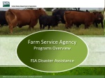 Farm Service Agency Programs Overview FSA Disaster Assistance