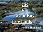 Arctic and Hudson Bay Lowlands