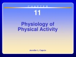 Chapter 11 Physiology of Physical Activity