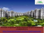 Amrapali Kingswood Noida Extension Project Booking