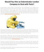 Should You Hire an Exterminator London Company to Deal with