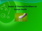Impact of Chemical Fertilizers on Human Health
