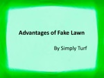 Different Advantages of Fake Lawn