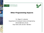 Other Programming Aspects