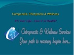 Chiropractic & Wellness Services in Rochester, NY