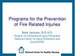 Programs for the Prevention of Fire Related Injuries