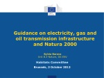 Guidance on electricity, gas and oil transmission infrastructure and Natura 2000