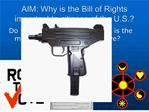 AIM: Why is the Bill of Rights important to citizens of the U.S.
