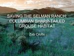 SAVING THE SELMAN RANCH