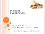 Different Carbohydrates
