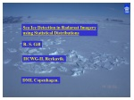 Sea Ice Detection in Radarsat Imagery using Statistical Distributions