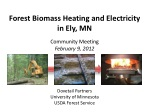 Forest Biomass Heating and Electricity in Ely, MN Community Meeting February 9, 2012