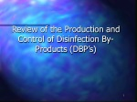 Review of the Production and Control of Disinfection By-Products (DBP's)