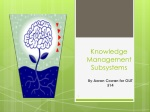 Knowledge Management Subsystems