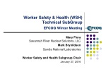 Worker Safety & Health  (WSH)  Technical SubGroup EFCOG Winter Meeting