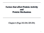 Factors that affect Protein Activity and Protein Mechanism