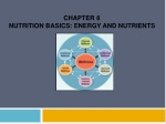 Chapter 8 Nutrition Basics: Energy and Nutrients