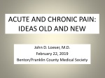 ACUTE AND CHRONIC PAIN:  IDEAS OLD AND NEW