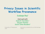 Privacy Issues in Scientific Workflow Provenance