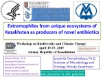 Extremophiles from unique ecosystems of Kazakhstan as producers of novel antibiotics