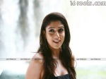 Nayanatara - South Indian Actress