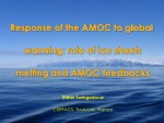 Response of the AMOC to global warming: role of ice sheets melting and AMOC feedbacks