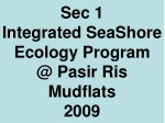 Sec 1 Integrated SeaShore Ecology Program @ Pasir Ris Mudflats 2009