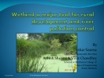 Wetland a major tool for rural development and river pollution control