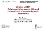 What is a MIC ? Relationship between a MIC and conventional pharmacodynamic parameters