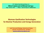 Biomass Gasification Technologies for Biochar Production and Energy Generation