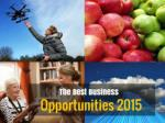 The Best Business Opportunities 2015
