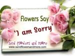 Buy Online Sorry Flower Bouquet