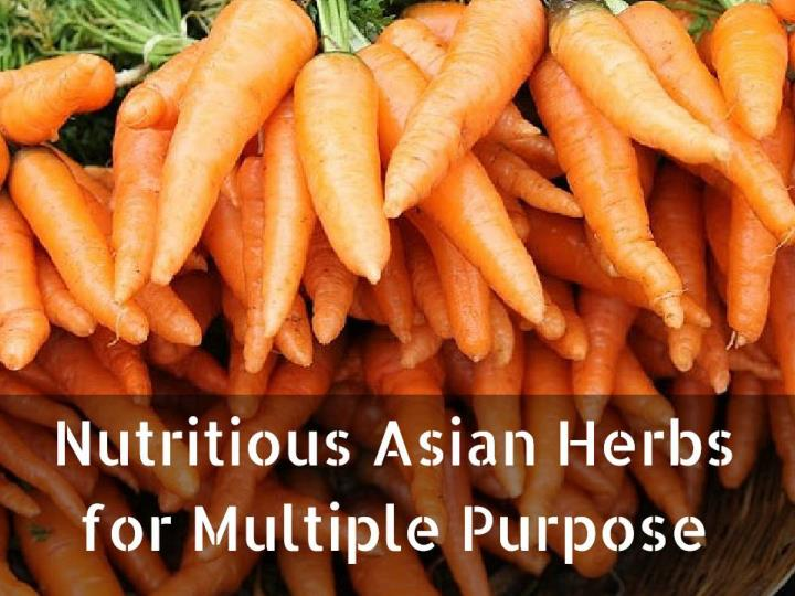 Nutritious Asian Herbs for Multiple Purpose