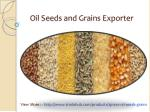 Oil Seeds and Grains Exporter