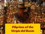 Pilgrims of the Virgin del Rocio
