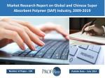 Global and Chinese Super Absorbent Polymer (SAP) Market