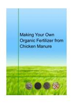Making Your Own Organic Fertilizer from Chicken Manure