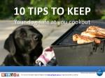 10 Tips to Keep Your Dog Safe at You Cookout