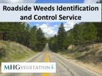 Roadside Weeds Identification and Control Service