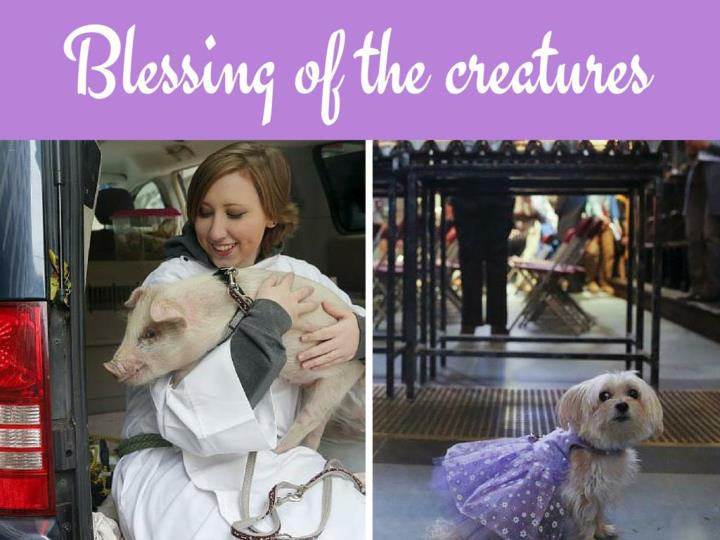 Blessing of the creatures