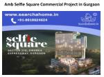 Amb Selfie Square Commercial Project in Gurgaon