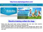 Electric Training Collars for dogs