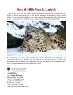 Best Wildlife Tour in Ladakh