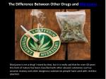 The Difference Between Other Drugs and Marijuana