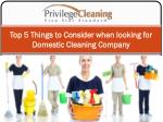 Top 5 Things to Consider when looking for Domestic Cleaning Company