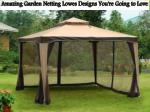 Amazing Garden Netting Lowes Designs You're Going to Love