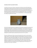 About cute cats