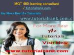 MGT 460 learning consultant / tutorialrank.com