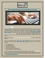 Legal Data Entry Service